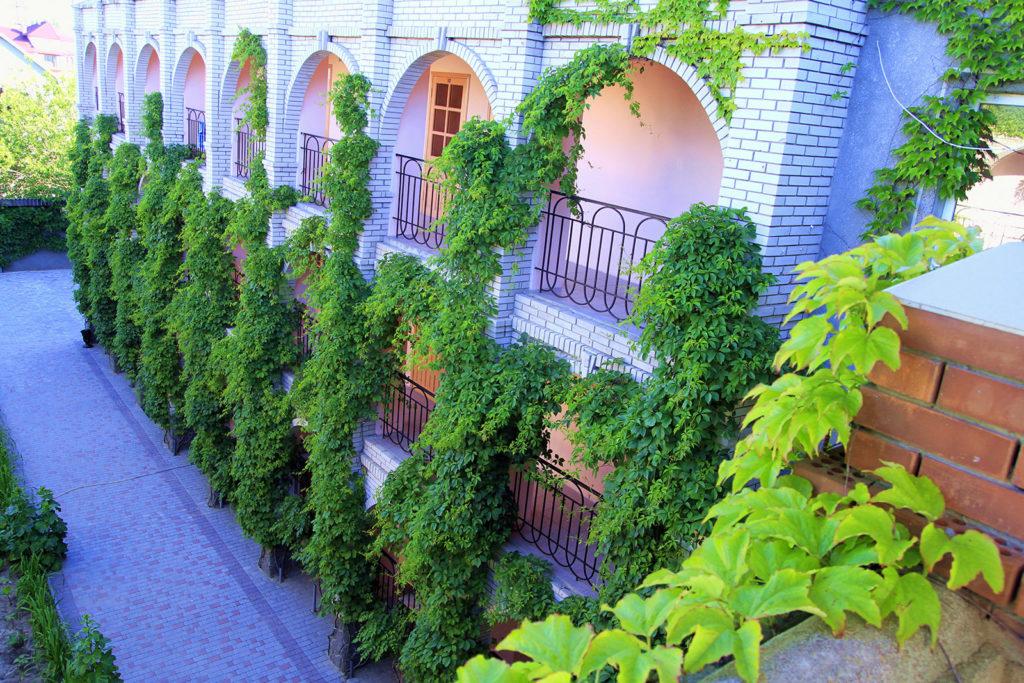 Уютный дворик Корпуса 3